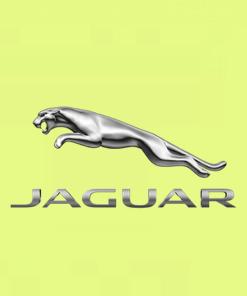🚗 Jaguar