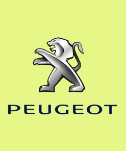 🚗 Peugeot